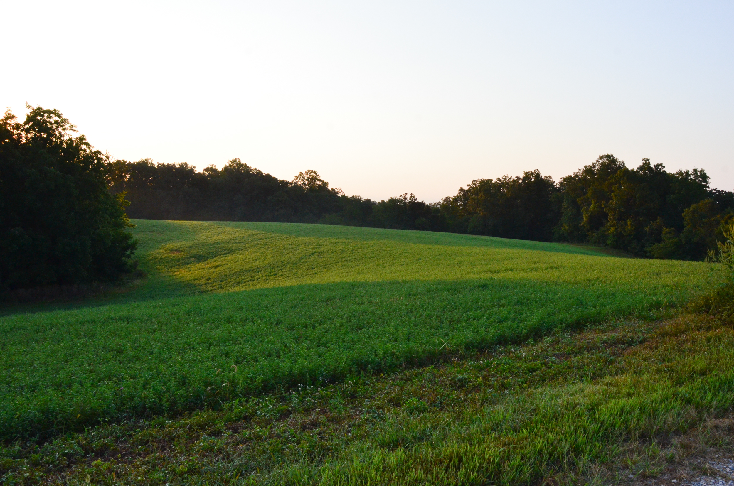 Perry Co MO240 Tract 2 1325