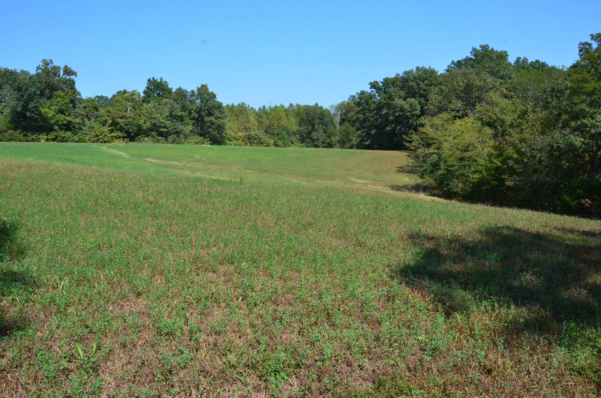 Perry Co MO240 Tract 2 1373