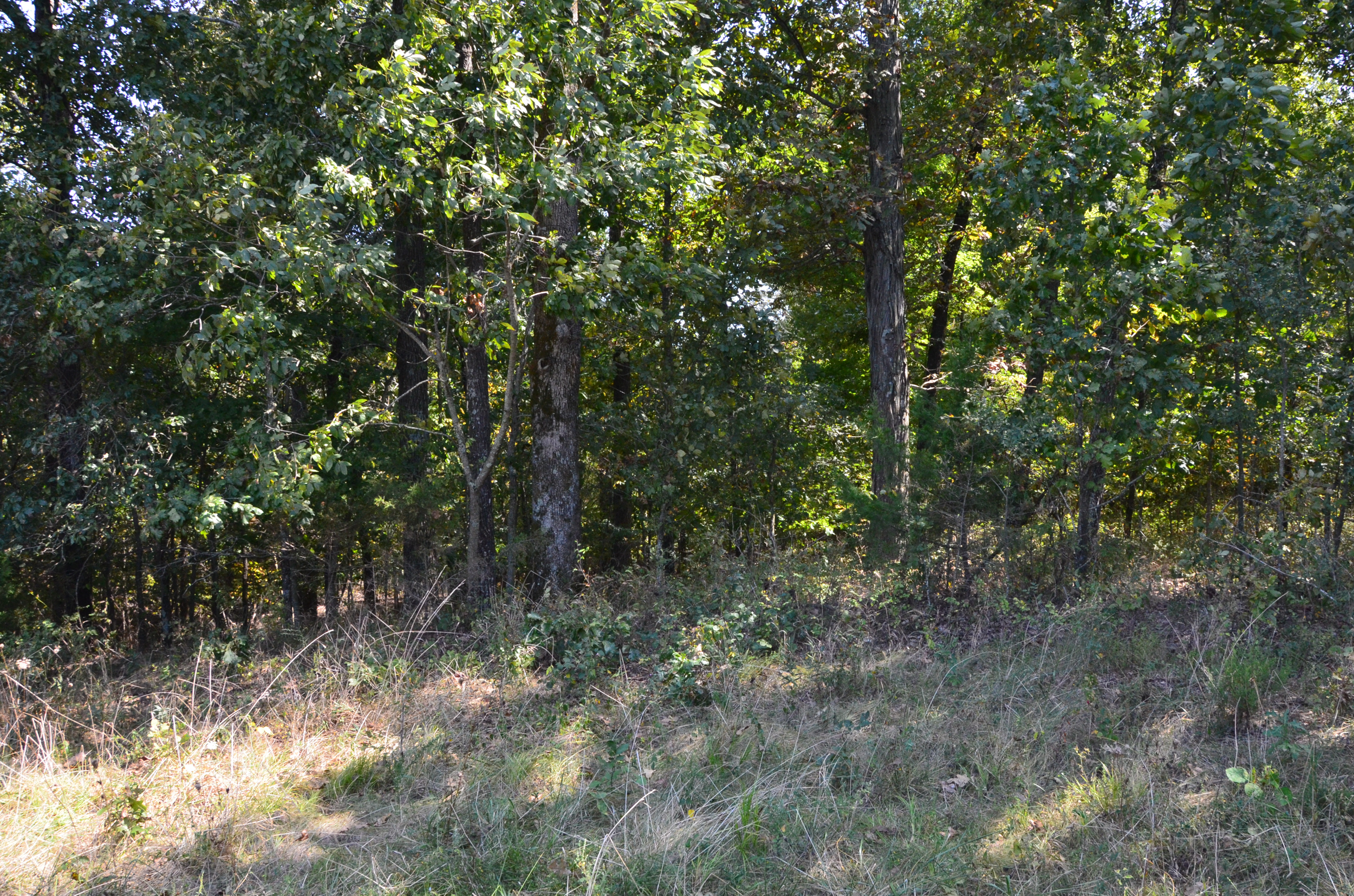 Perry Co MO240 Tract 2 1374