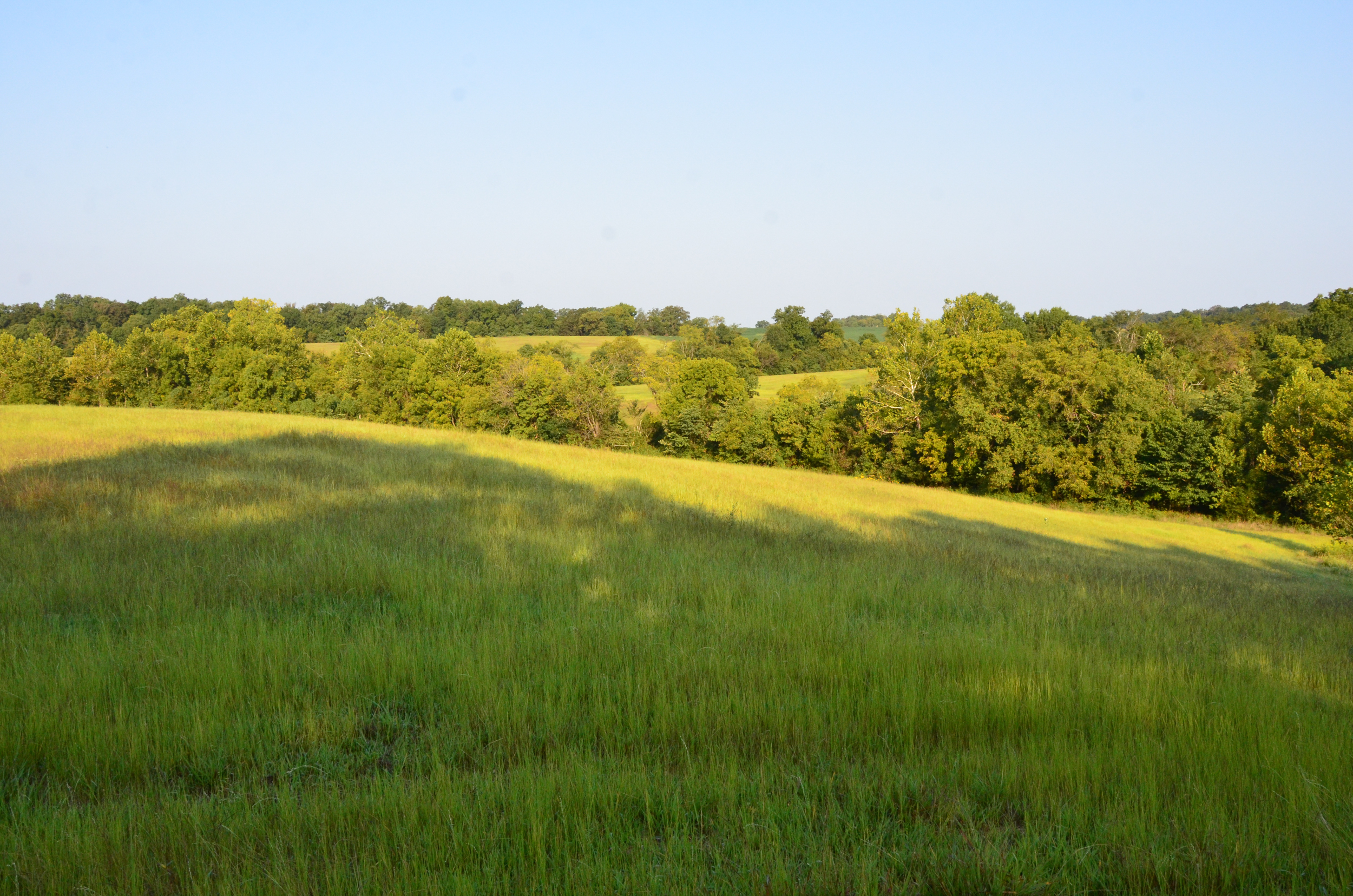 Perry Co MO240 Tract 3 1336