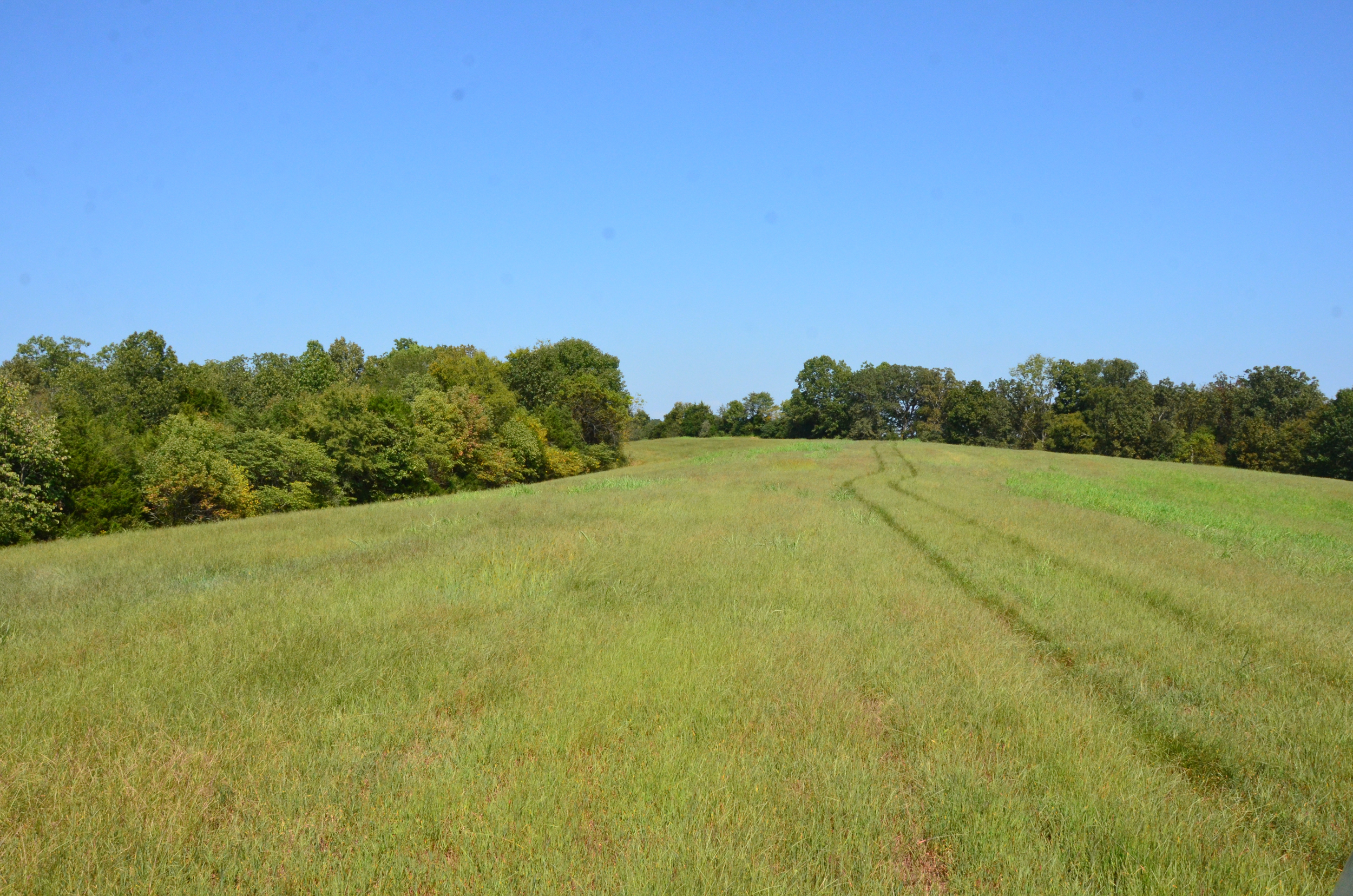 Perry Co MO240 Tract 4 1392