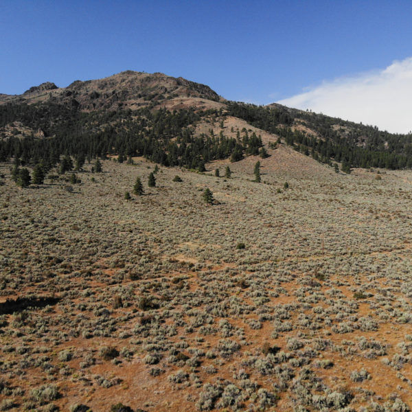 Beautiful Ranch Land Bordering Plumas National Forest