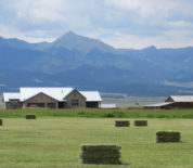 Custom Ranch Home And Productive Hay Ground With Picturesque Views