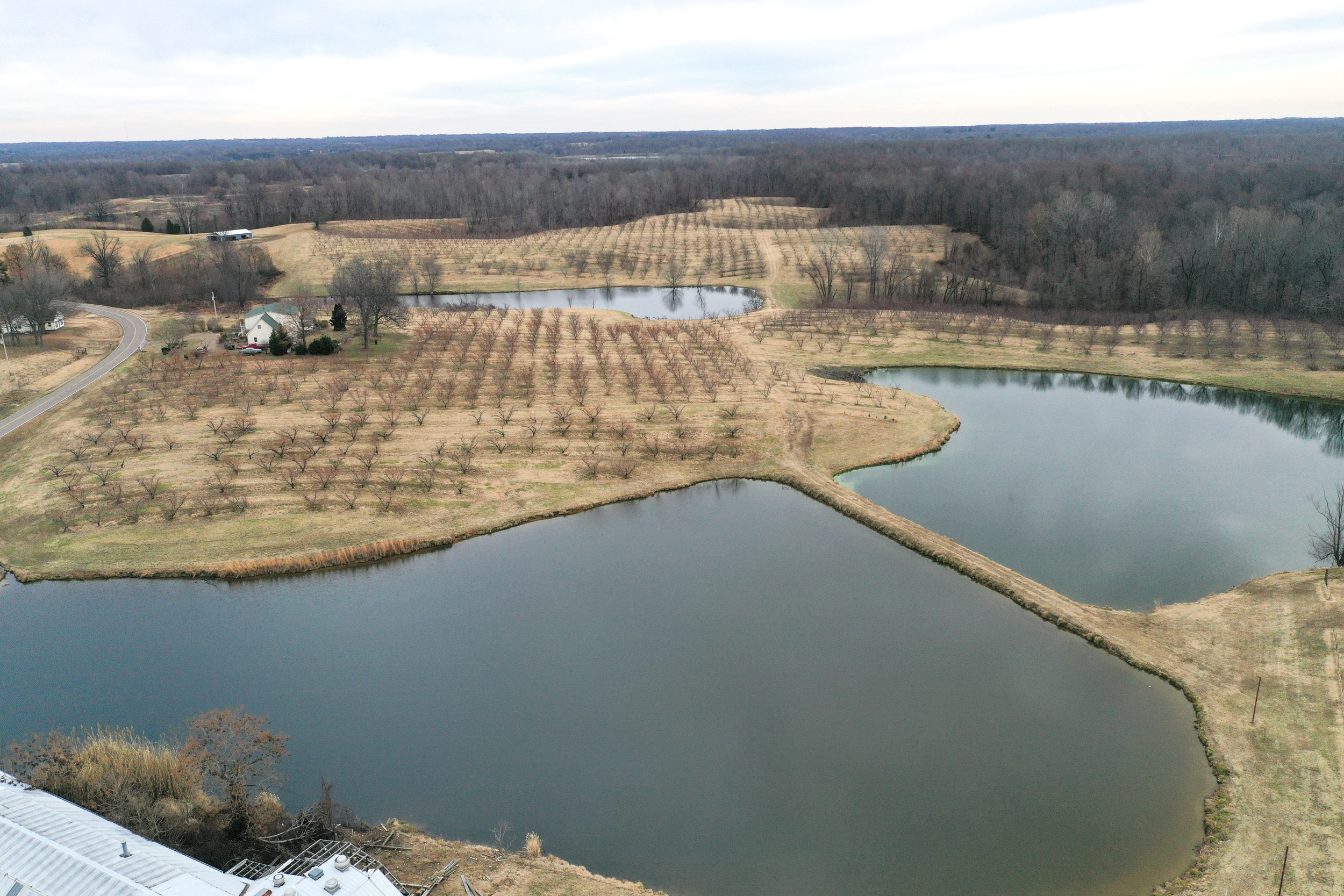 Obion TN TRACT 1 0221