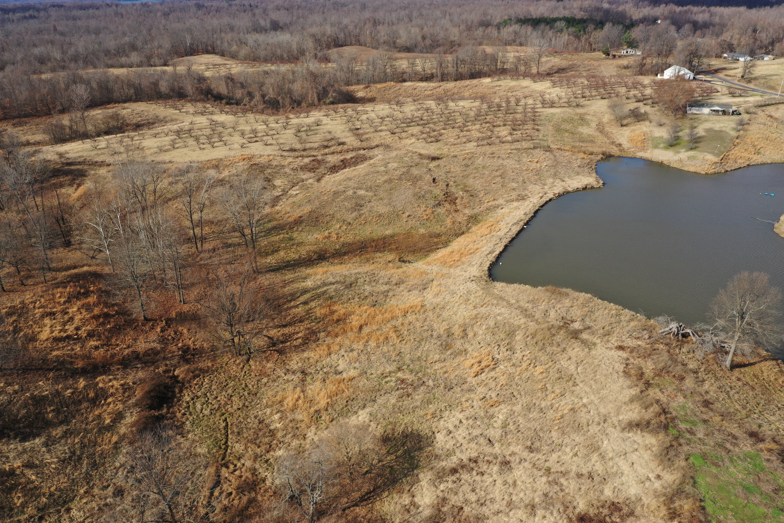 Obion TN TRACT 2 0329