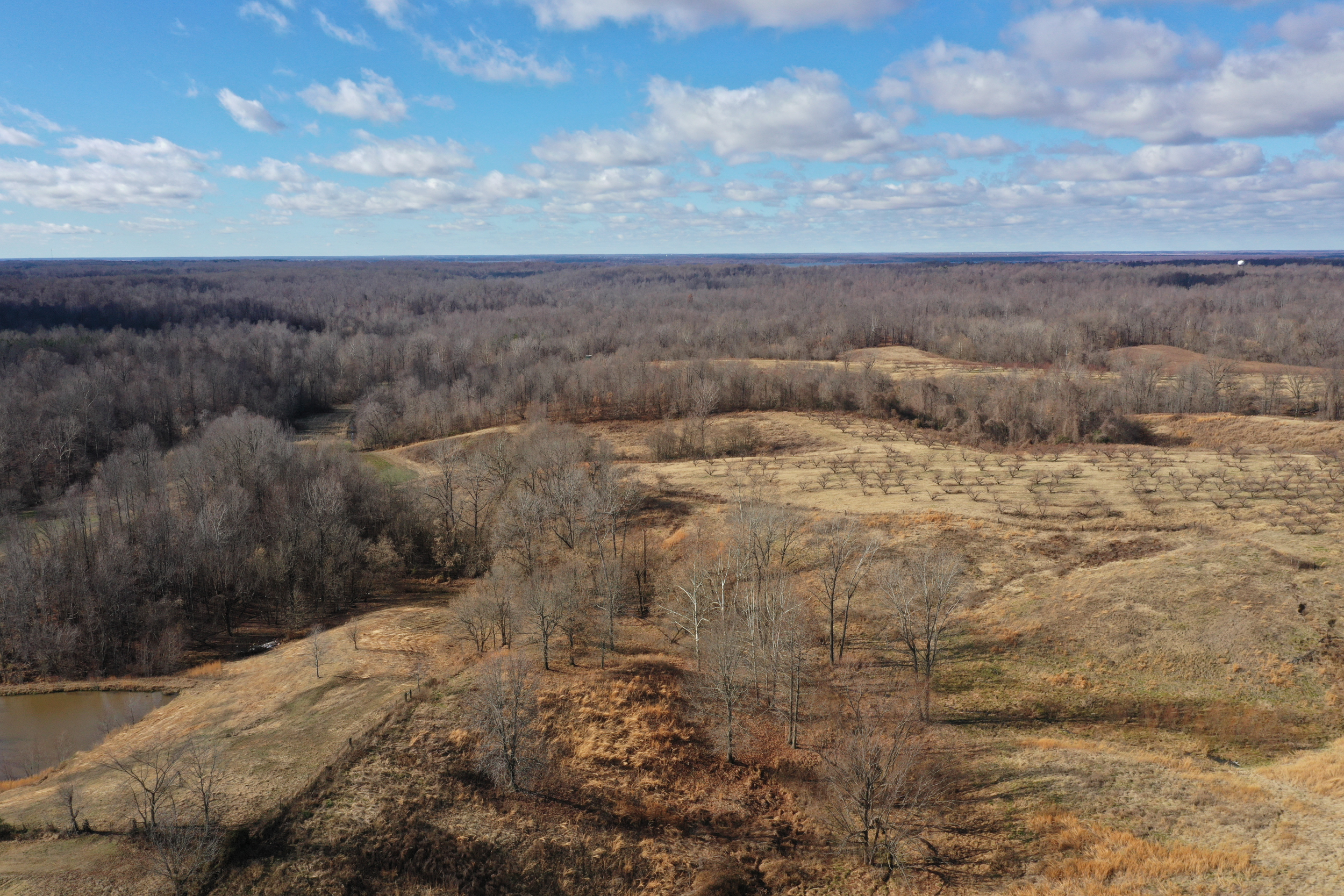 Obion TN TRACT 2 0332