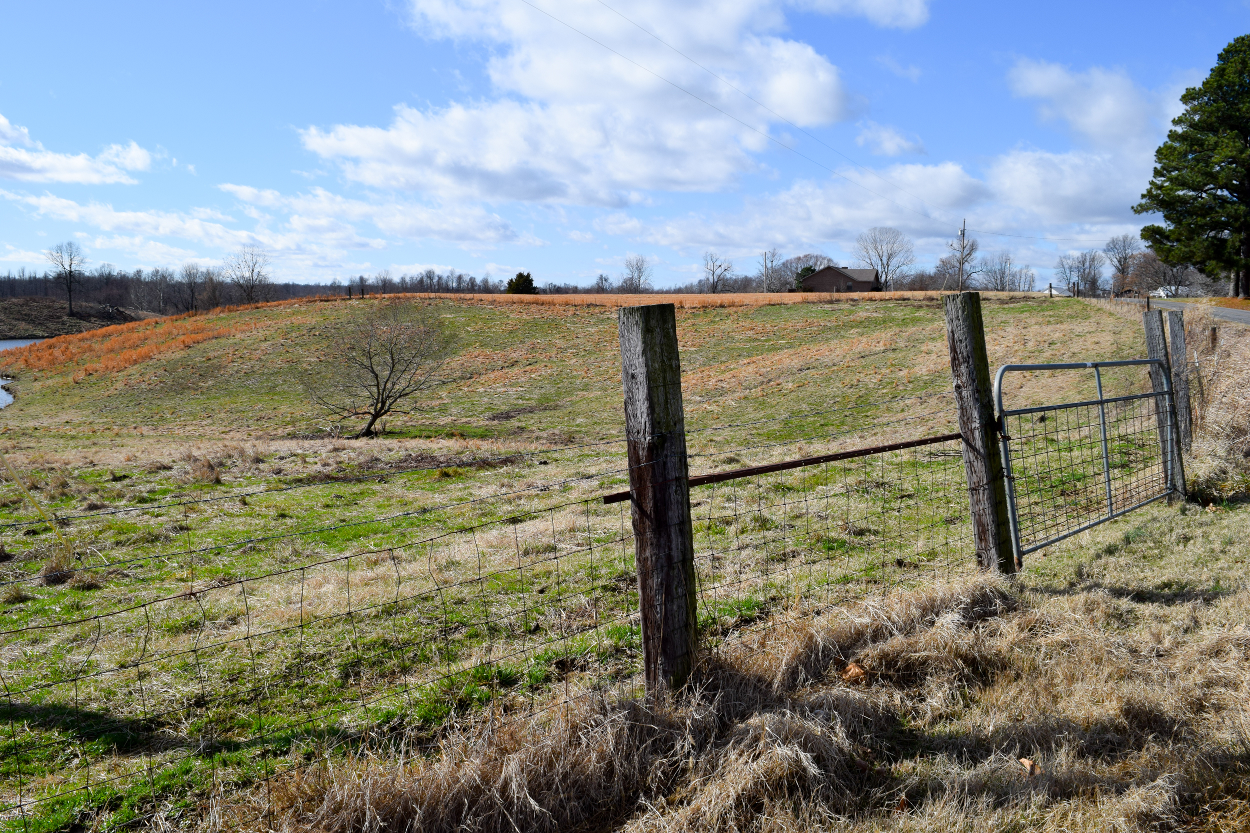 Obion TN TRACT 2 0751