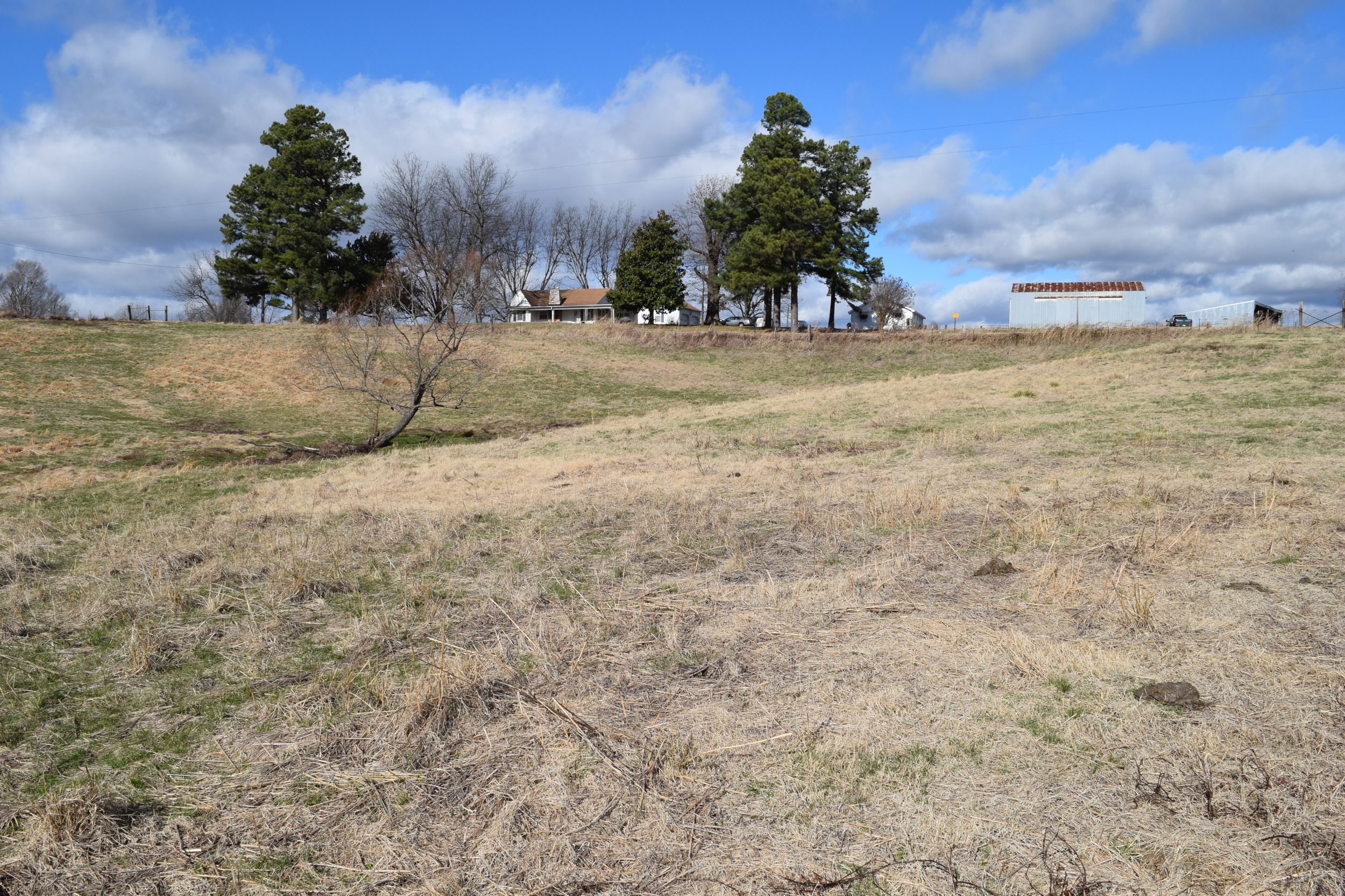 Obion TN TRACT 2 0754