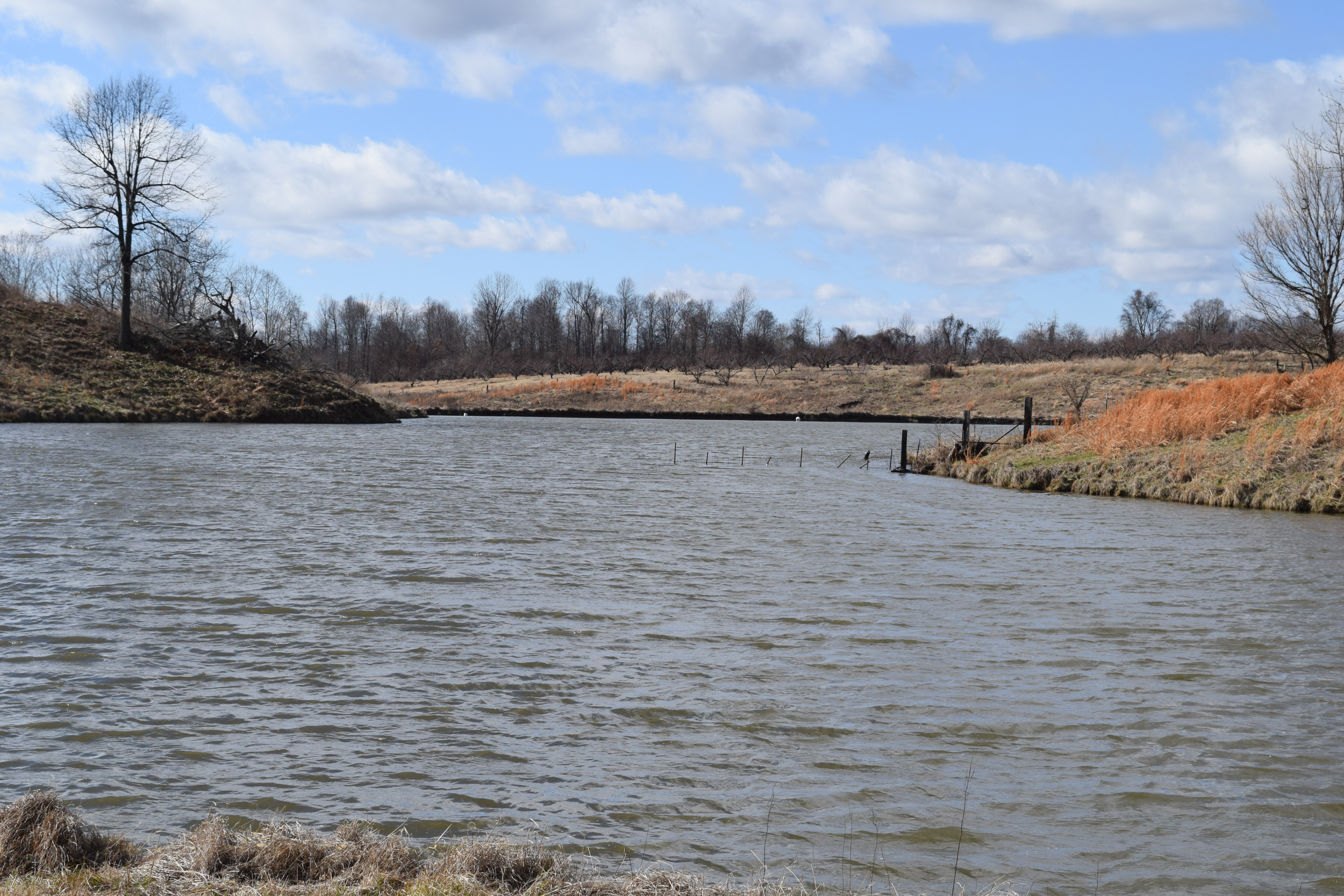 Obion TN TRACT 2 0757