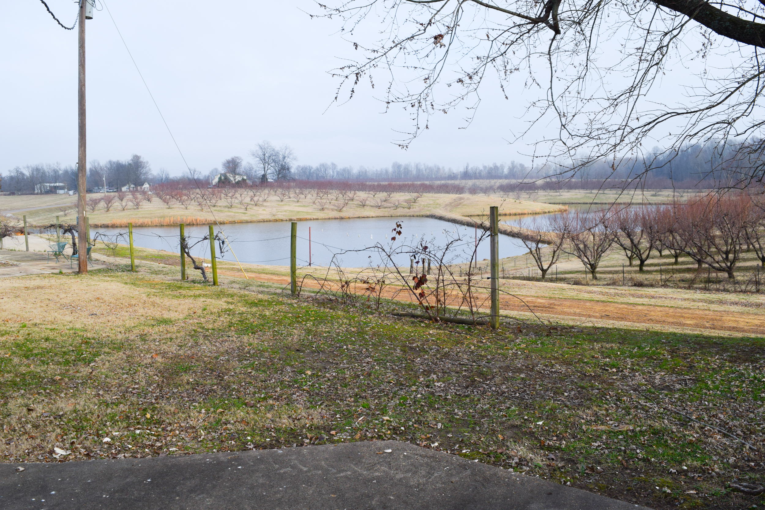 Obion TN TRACT 4 0745