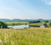 Once In A Lifetime Opportunity to Own One of The Most Desirable and Diverse Properties in Pike Co MO