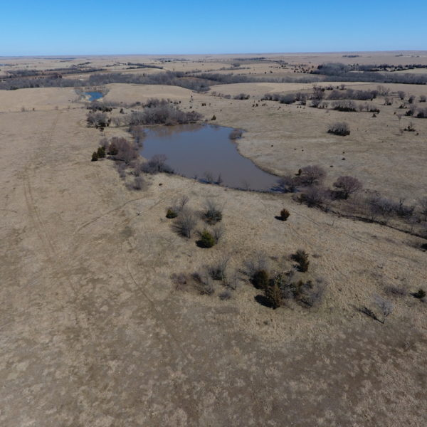 Grassland Tract With Nice Pond And Good Fence