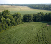 Income Producing Farm With Hunting Opportunities