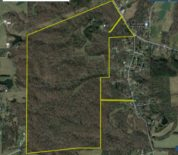 Large Well-Managed Hardwood Timber Tract With Home