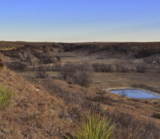Liberty Ranch To Be Auctioned In Northwest Kansas