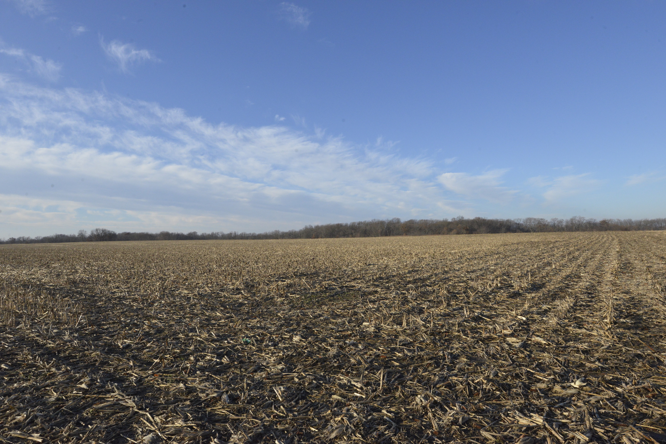 Brown Il Tract 1 36 0641