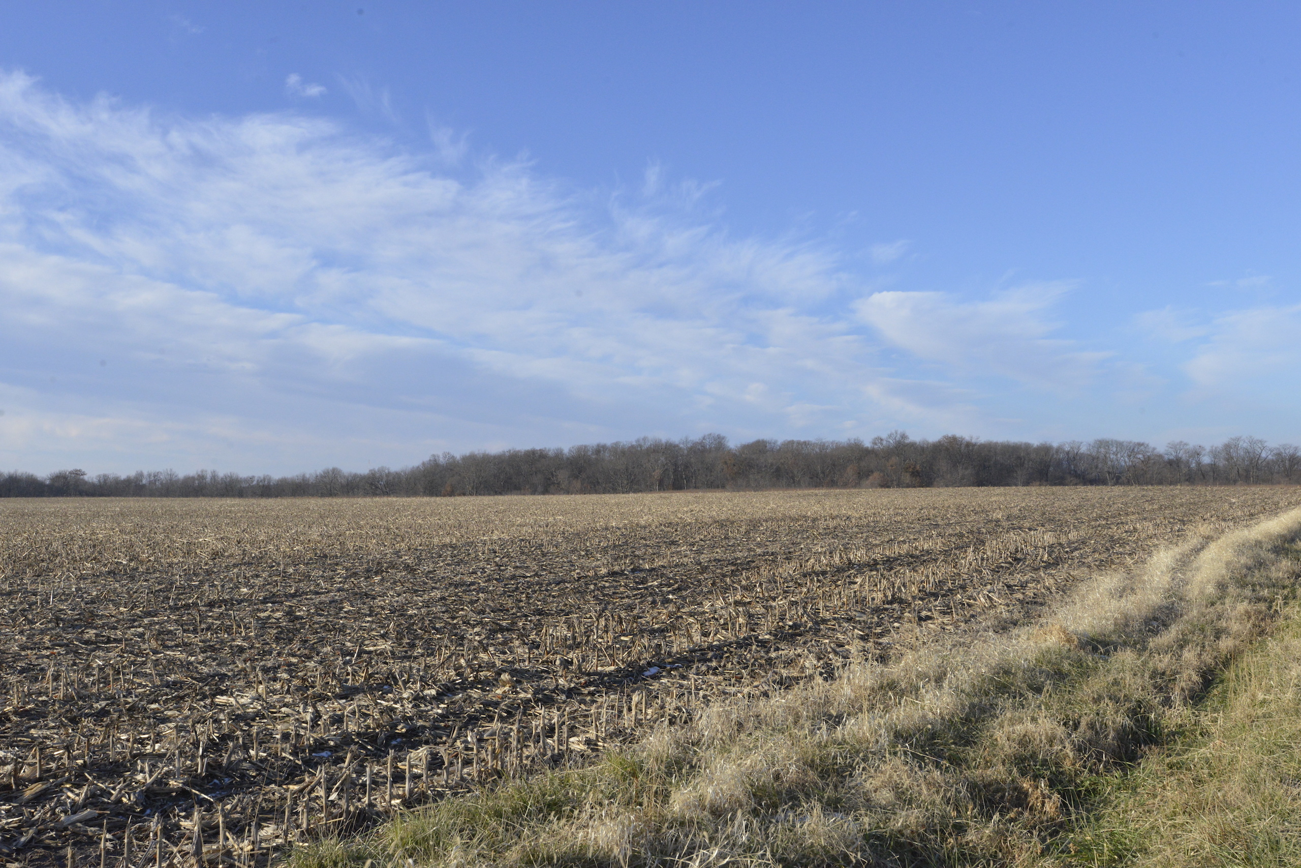 Brown Il Tract 1 36 0646