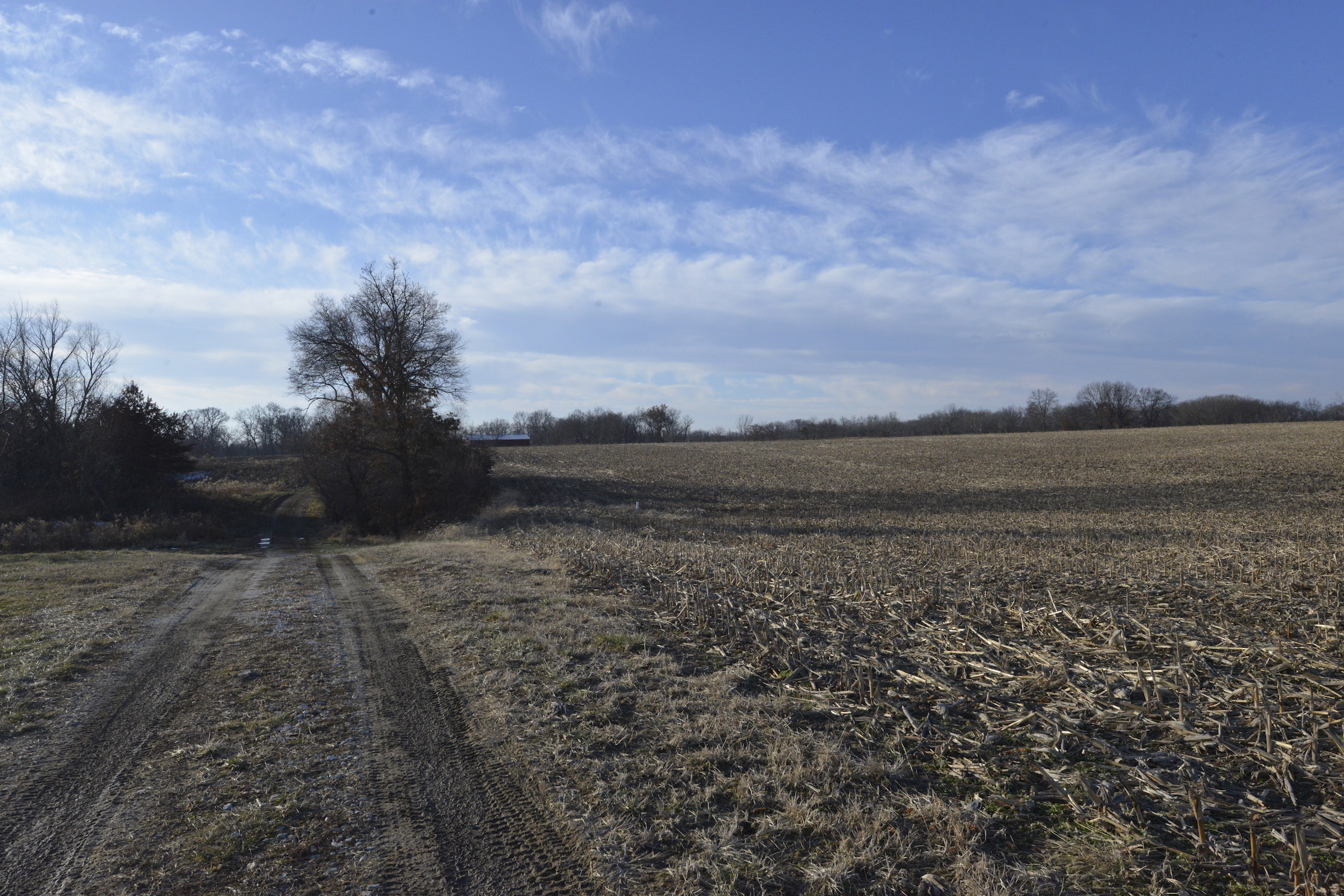 Brown Il Tract 1 36 0647