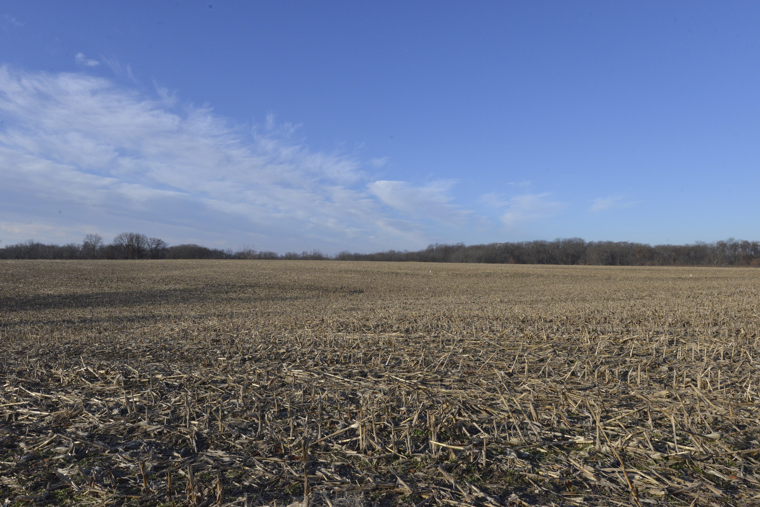 Brown Il Tract 1 36 0648