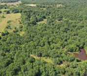 Mostly Timber Tract With Excellent Hunting On Quiver Ranch