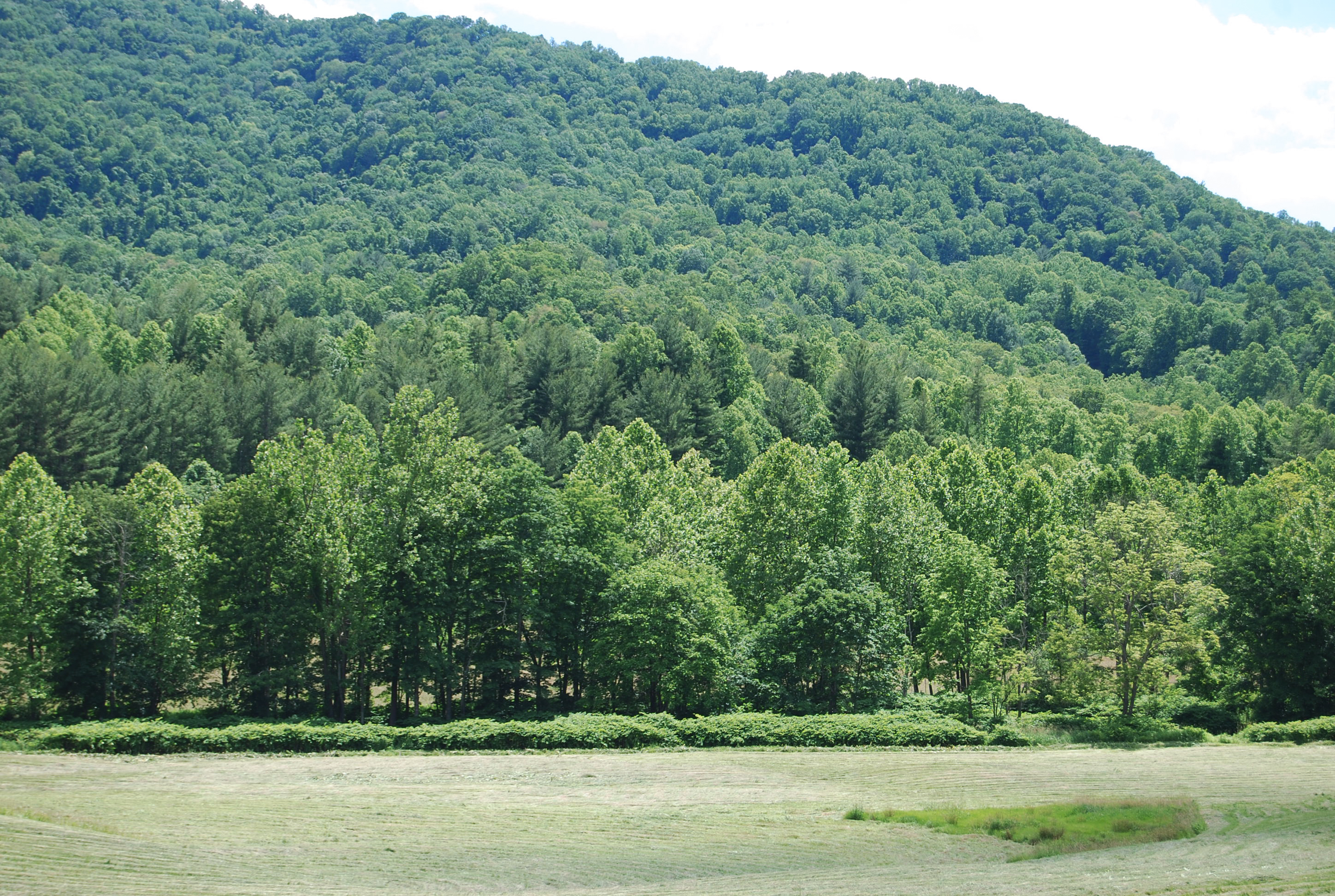 Yancey NC159_001-Pasture-with-Mountain-View