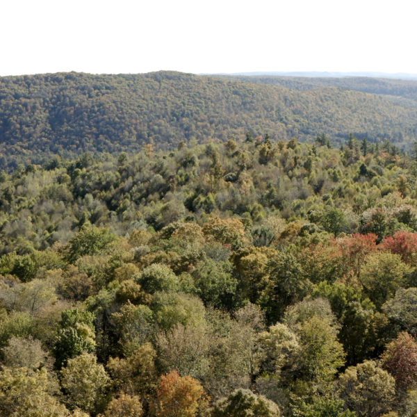 Mountain Property With Scenic Views, Building Sites, Trails Near PA Border