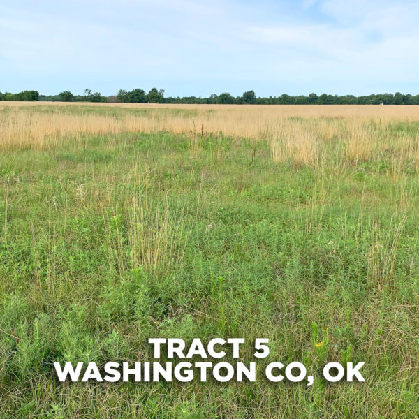 Pasture Tract With Homesite Potential Close To Tulsa