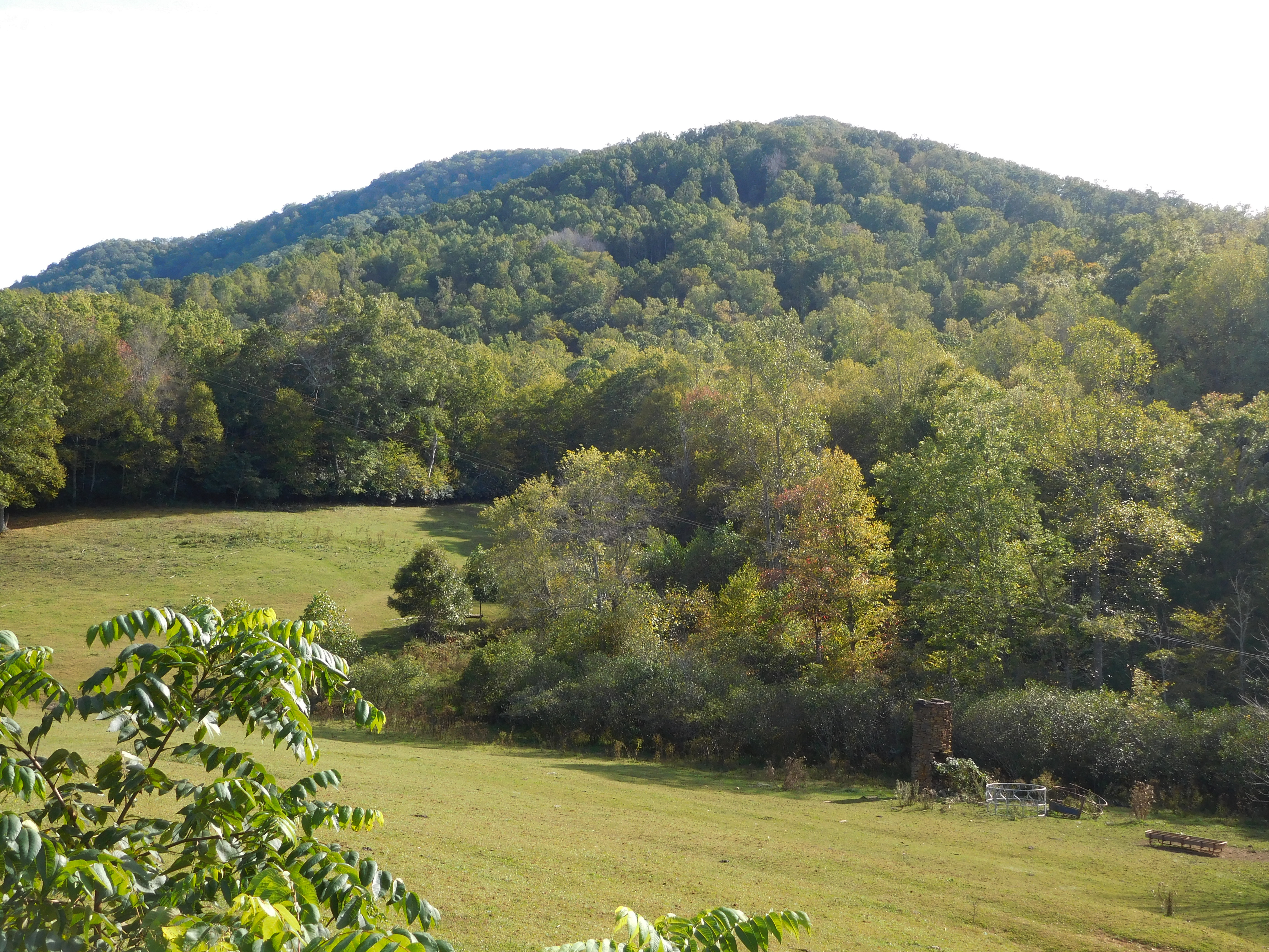 Yancey NC95_002-Pasture-and-Mountain-View