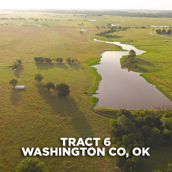 Picturesque Pasture Tract With Building Sites And Lake