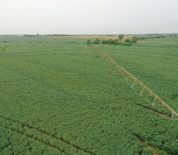 Productive Irrigated Tillable Farm in Northern KS