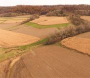 Buffalo County WI Tillable Farm With Excellent Hunting Auctioning In Two Tracts