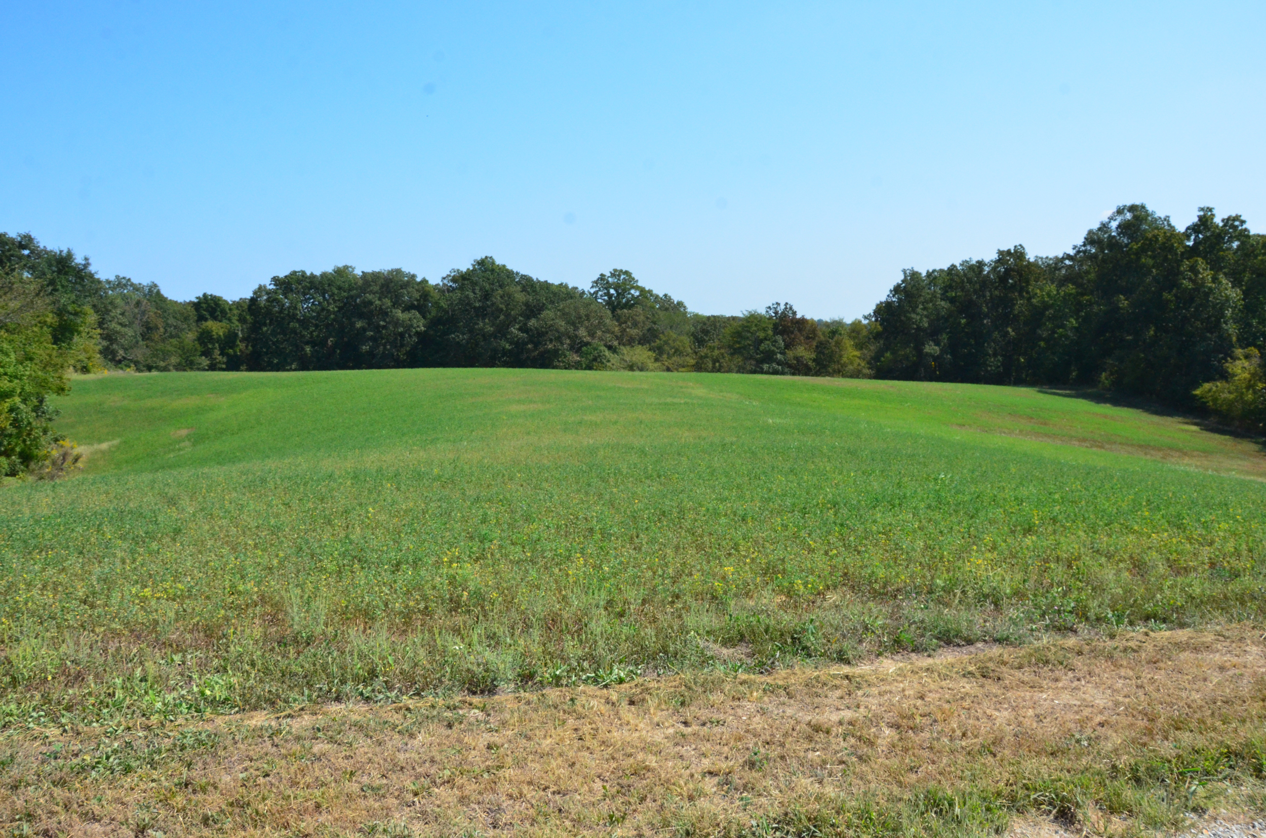 Perry Co MO240 Tract 2 1372