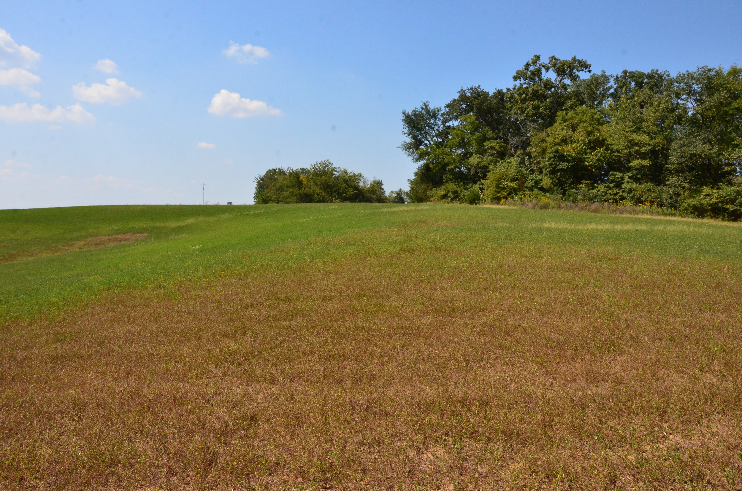 Perry Co MO240 Tract 2 1375