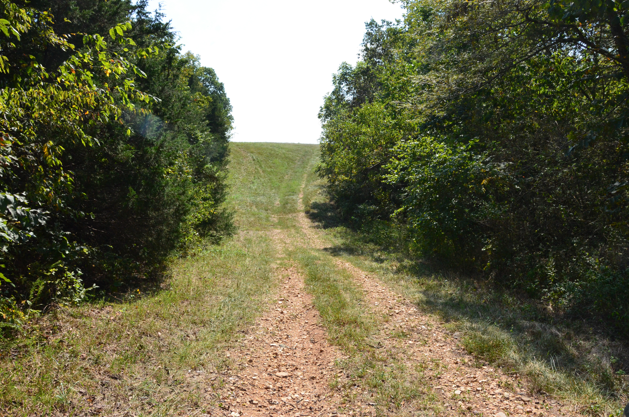 Perry Co MO240 Tract 4 1385