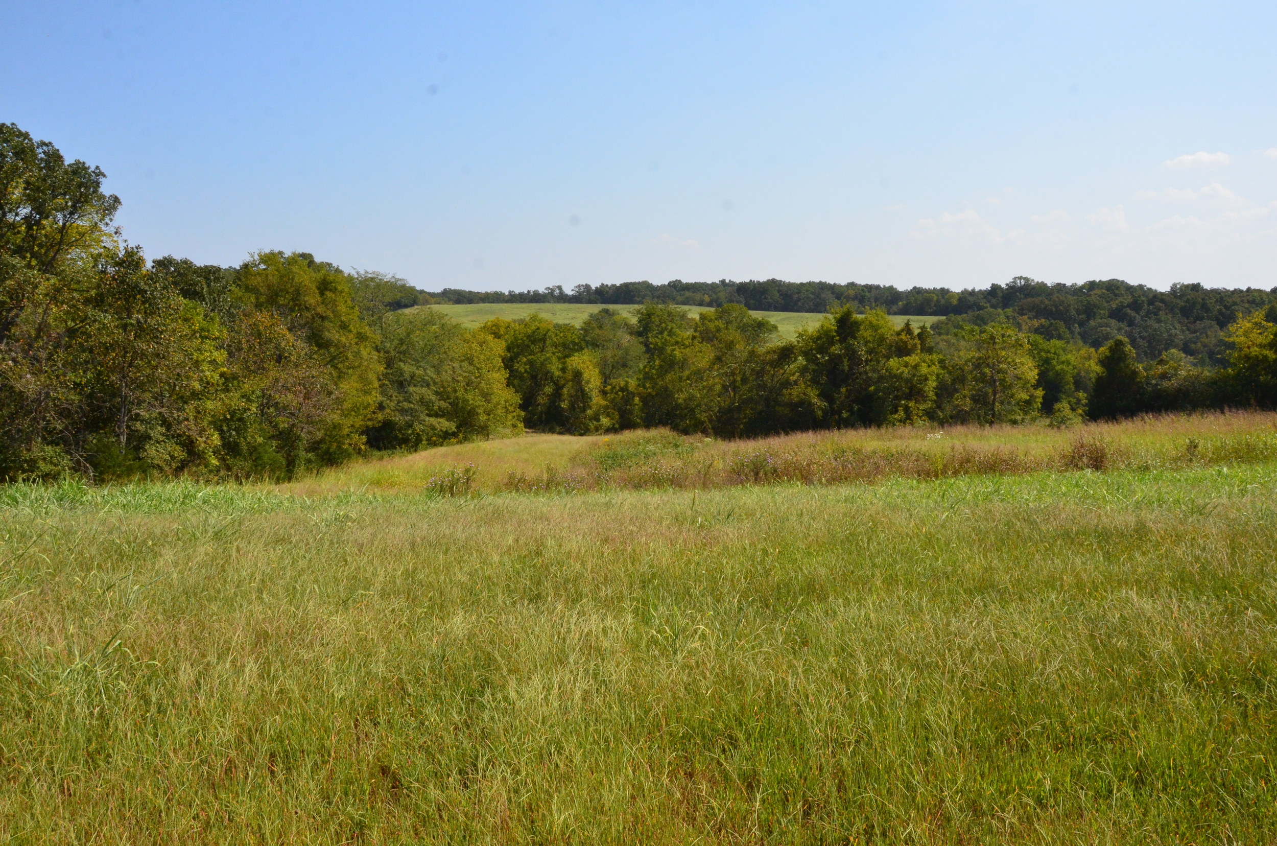 Perry Co MO240 Tract 4 1388