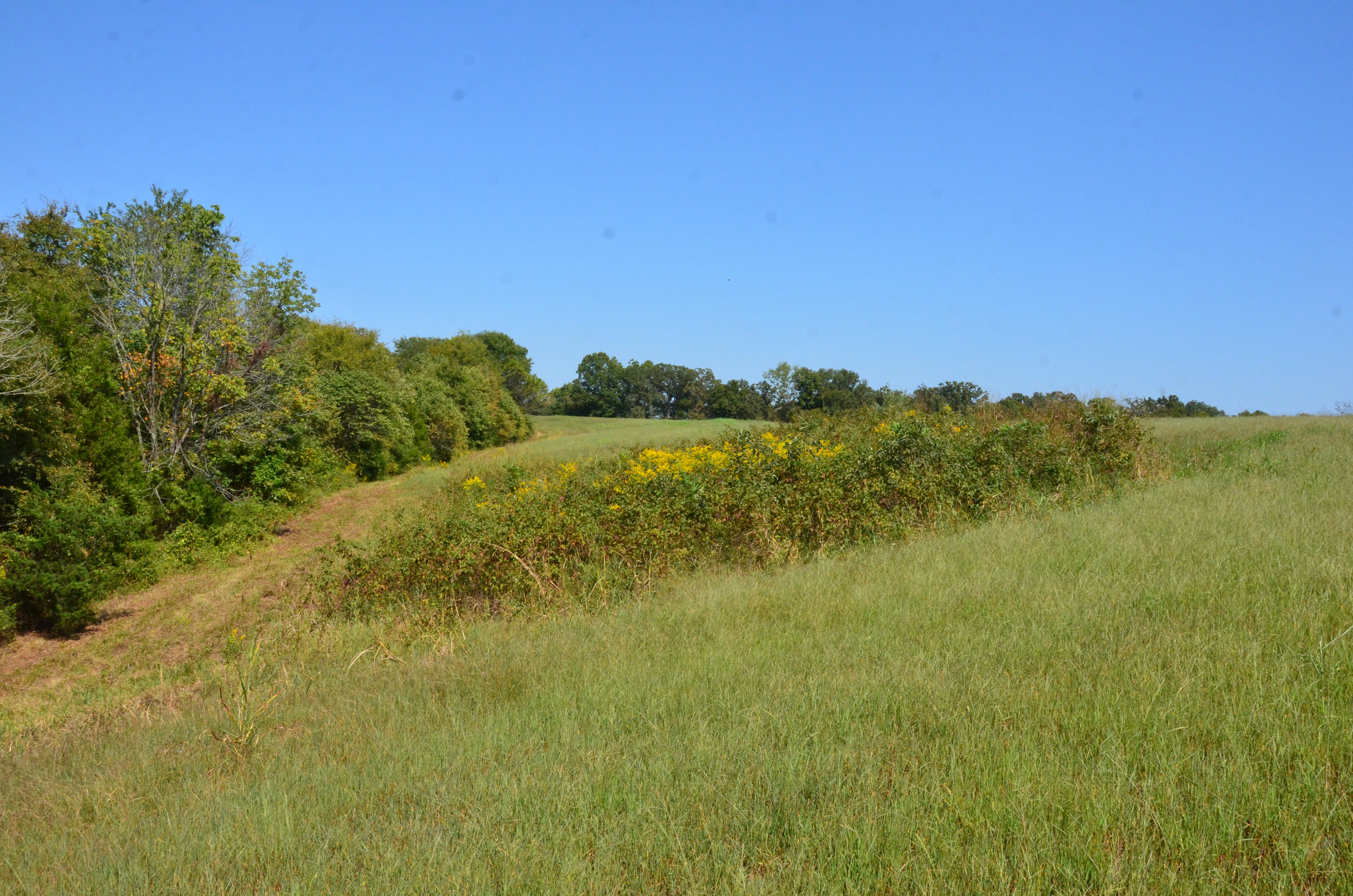 Perry Co MO240 Tract 4 1391