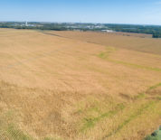 Tillable Farm with Irrigated Acres in Saline Co NE
