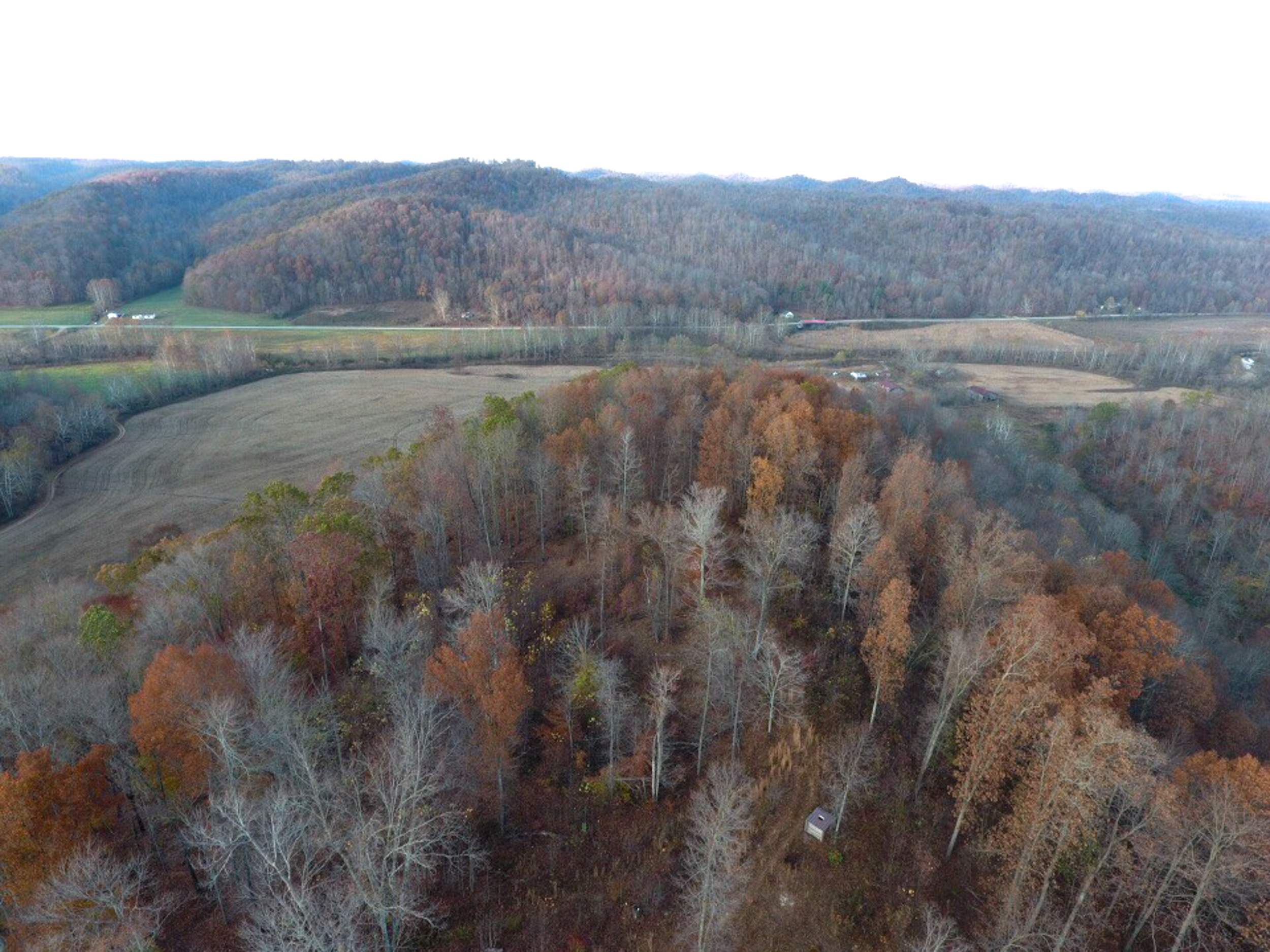 Tract2 Lewis KY809 40
