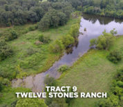 Twelve Stones Ranch Mostly Timber Tract