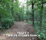Twelve Stones Ranch Timber Tract Near Simmons Plant