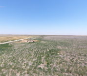 Well-Managed Farmland With Irrigation Potential